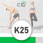 K25 – kredit 2500, platnost 6 měsíců